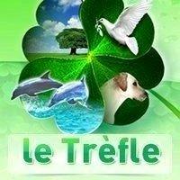 logo-letrefle